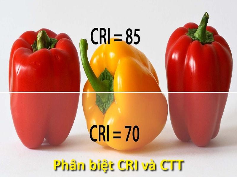 phân biệt chỉ số CRI và chỉ sso CCT