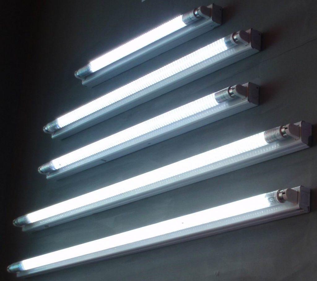 cac loại bóng đèn huỳnh quang